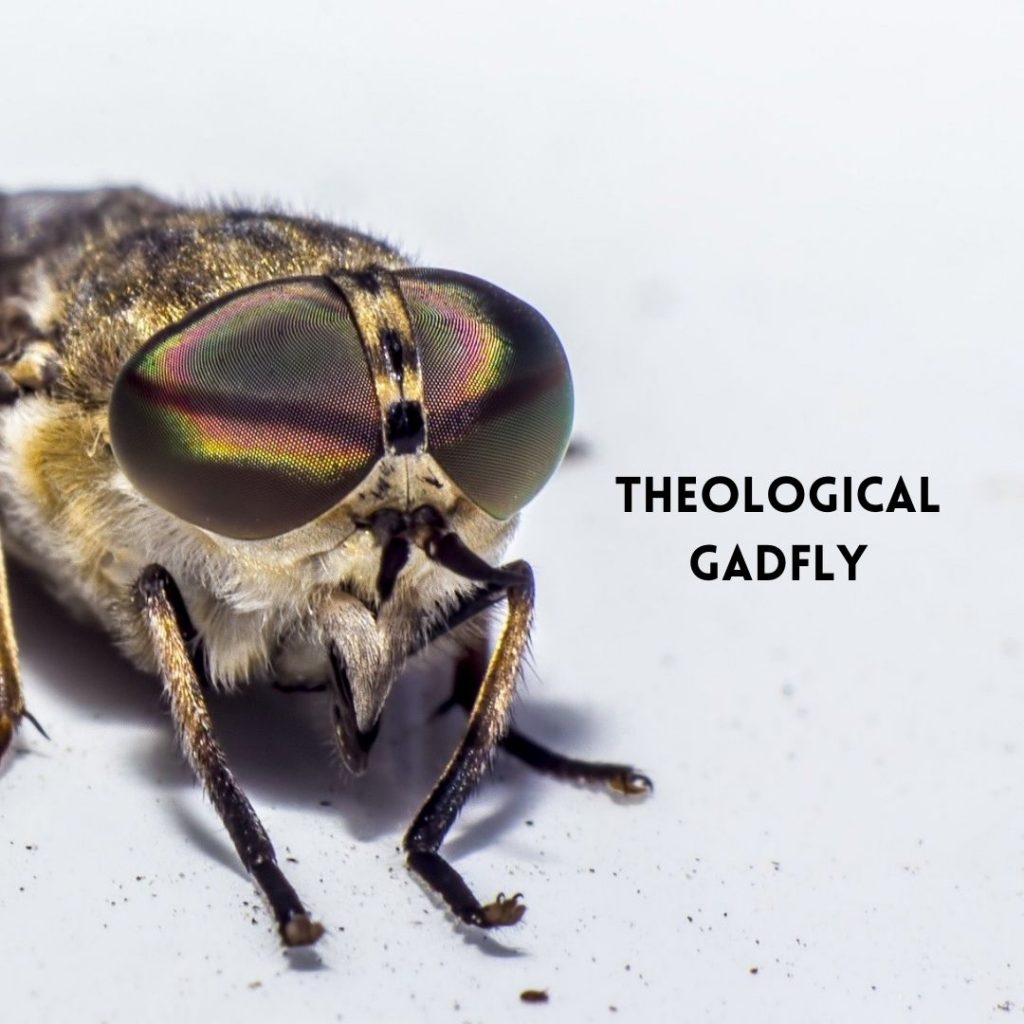 Theological Gadfly (2)
